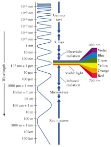 Electromagnetic (EM) spectrum:  Visible light is the only part of the EM spectrum that we see and appears to us as colors of the rainbow.  (Source:  http://science-edu.larc.nasa.gov/EDDOCS/Wavelengths_for_Colors.html)